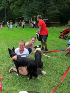 Den psích sportů - Rudník