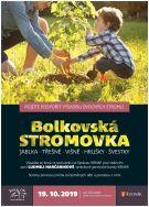 Bolkovská STROMOVKA