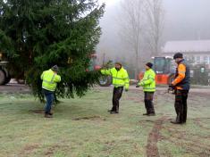 Kácení Vánočního stromu 24.11.2020